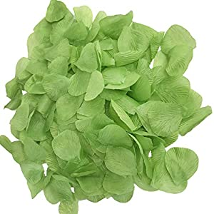 DALAMODA Apple Green 1000pcs Silk Rose Petals Artificial Flower Wedding Party Aisle Decor Tabl Scatters Confett 1