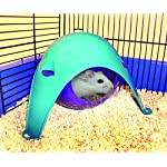 Lixit Critter Space Pod, Perfect for Small Animals 12