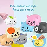 The perseids Electronic Music Scale Cat Toys Kit