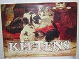 Kittens, Michelle Lovric, 1561383740