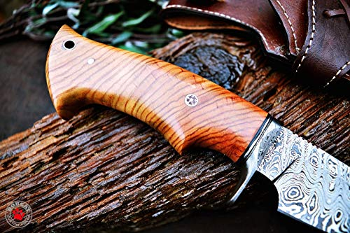 Custom Handmade Hunting Knife Bowie Knife Damascus Steel Survival Knife EDC 10'' Overall Olive Wood with Sheath by Bobcat Knives (Image #3)