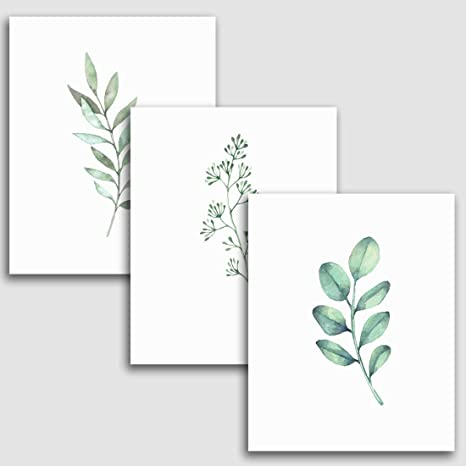 Amazon Com 8x10 Inches Botanical Wall Prints Set Of 3 Plants Art For Your Home Decor Greenery Decorations For Kitchen Bathroom Bedroom And More Posters Prints