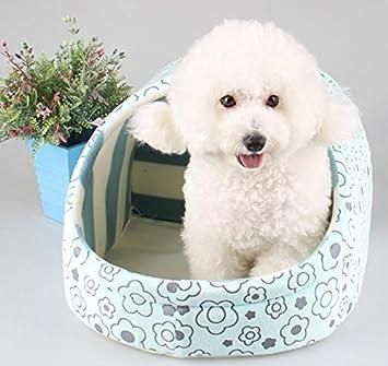 EEvER Cómoda Cama Lavable para Mascotas Cama de Gato Cojín de Cama para Perro pequeño con Suave Manta Azul: Amazon.es: Productos para mascotas
