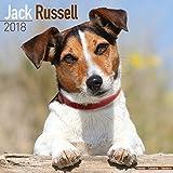 Jack Russell Calendar - Dog Breed Calendars - 2017 - 2018 wall Calendars - 16 Month by Avonside