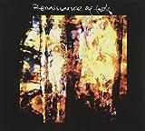 Renaissance Of Fools by Renaissance Of Fools (2011-10-11)