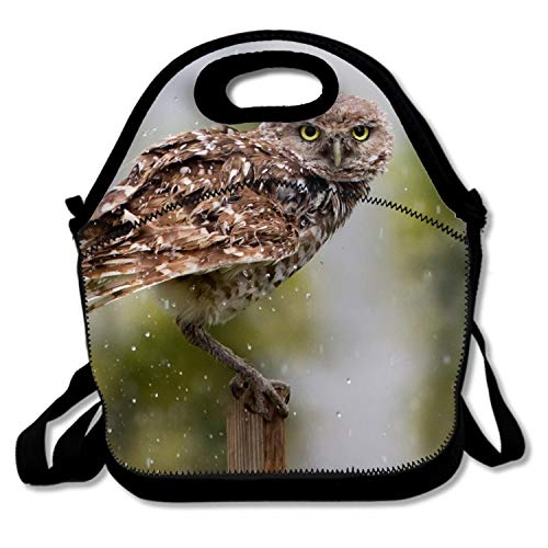 Animal Burrowing Owl Birds Lunch Bag Insulated Tote Handbag Lunchbox with Shoulder Strap for Women Teens Girls Kids Adults