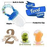 Honeypie Fresh Food Feeder, Fruit Feeding Pacifier makes a Sweet Baby Teether (2 Nipple Sizes)