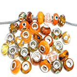 Ten (10) Pack of Assorted Orange Glass Lampwork, Murano Glass Beads for European Style Bracelets