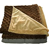 5lb Weighted Blanket with Dot Minky Cover for Kids 40-60lb individual.Help Children with Sleep Issues Anxiety Autism Stress (Inner Light Gray/Cover Coffee Brown & Beige, 36''x48'' 5 lbs)