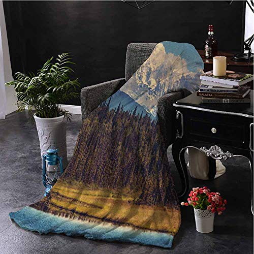 hengshu Alaska Fuzzy Blankets King Size Colorful Summer Season in Northwest America Snow White Mountains River Fresh Forest Soft Throw Blankets for Adults W40 x L60 Inch Multicolor