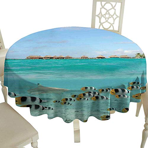 - fabric tablecloth 54 Inch Ocean,Blacktip Reef Shark Chasing Butterfly Fish Lagoon of Bora Bora Tahiti,Aqua Yellow and Black Great for,family,outdoors,restaurant,Party,Wedding,Coffee Bar,traveling,Part