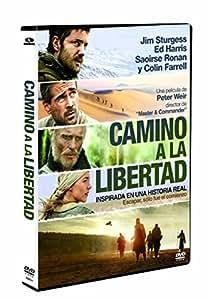 Camino A La Libertad [DVD]