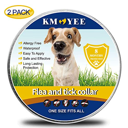KMOYEE Collar for Dogs