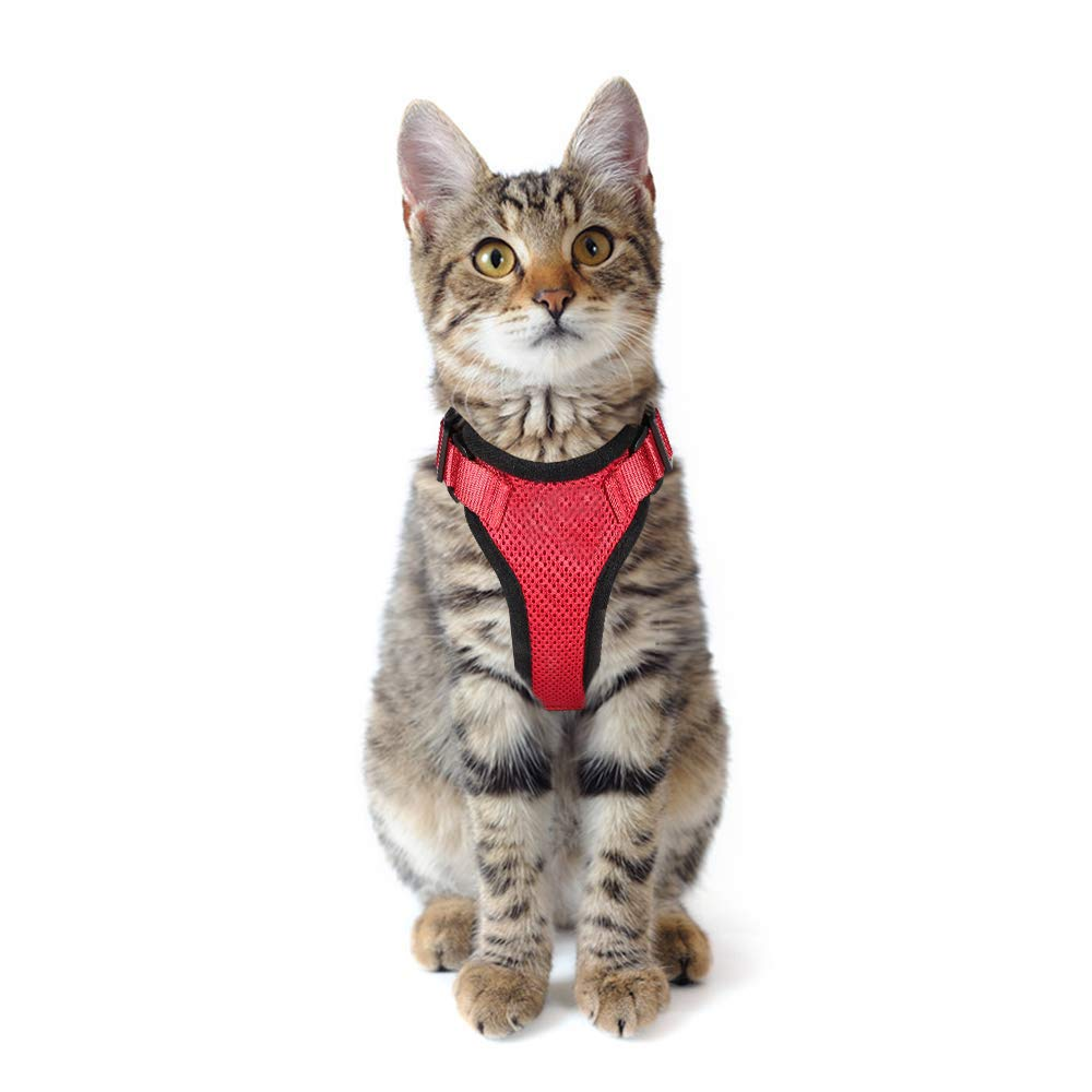 Whamsha Arnés para Gato, a Prueba de Escapes, arnés para Cachorro ...