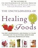 The Encyclopaedia Of Healing Foods