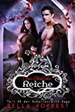 Das Schattenreich der Vampire 20: Der Held der Reiche (kindle edition)
