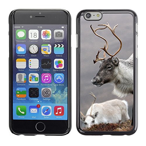 Premio Sottile Slim Cassa Custodia Case Cover Shell // F00009282 Reindeer Cairngorms // Apple iPhone 6 6S 6G PLUS 5.5""