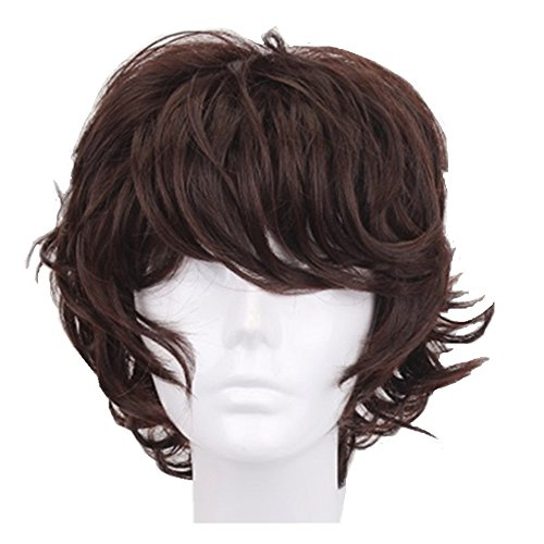 Halloween Costume Men Long Hair (God's Hand 13 Inch Dark Brown Short Curly Anime Cosplay Wigs with Bang for Men Boys Girls Costume Halloween Party (dark brown))