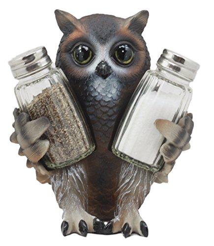 Ebros Gift Cute Owlet Baby Owl Glass Salt & Pepper Shakers Holder Figurine Set Wildlife Forest Sculpture -
