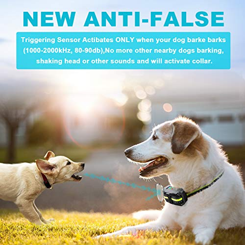 Bark Collar [2019 Upgrade Version] No Bark Collar Rechargeable Anti bark Collar with Beep Vibration and No Harm Shock Smart Detection Module Bark collar for Small Medium Large Dog by Authen (Image #1)