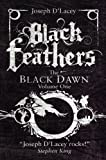 Black Feathers (The Black Dawn)