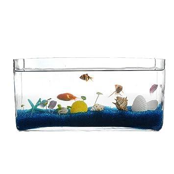 GONGYU - Acuario Rectangular de Cristal para Oficina pequeña, para visualización de paisajes, Acuario Transparente: Amazon.es: Productos para mascotas