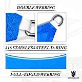 Royal Shade 16' x 16' x 16' Blue Triangle Sun Shade Sail Canopy Outdoor Patio Fabric Shelter Cloth Screen Awning - 95% UV Protection, 200 GSM, Heavy Duty, 5 Years Warranty, We Make Custom Size