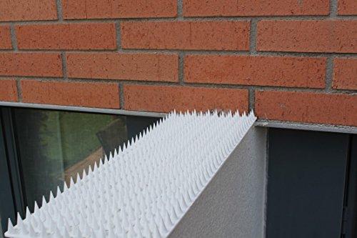 5 Mt Pinchos Anti-aves y anti-gatos 10 Piezas de 50cm Polipropileno anti UV (Blanco): Amazon.es: Bricolaje y herramientas