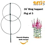 MTB 36 x 18 Peony Double Ring Plant Support Pack of 5