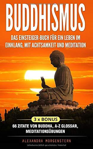 Buddhismus Das Einsteiger Buch Für Ein Leben Im Einklang