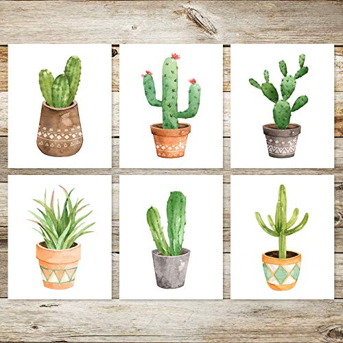6 Boho Succulent Cactus 8x10 Watercolor Art Prints]()