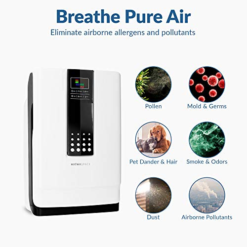 Hathaspace Smart True HEPA Air Purifier, 5-in-1 Large Room Air Cleaner & Deodorizer for Allergies, Pets, Asthma, Smokers, Odors - Eliminates Pet Hair, Allergens, Dust, Pollen, Mold, Bacteria, More