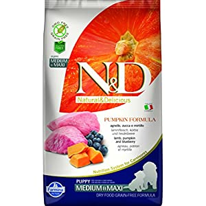 Farmina NandD Grain Free Pumpkin Lamb and Blueberry Puppy Food, 2.5 kg (Medium and Maxi)