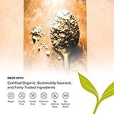 Banyan Botanicals Organic Punarnava Powder
