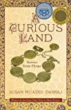 A Curious Land: Stories from Home (Grace Paley Prize in Short Fiction)