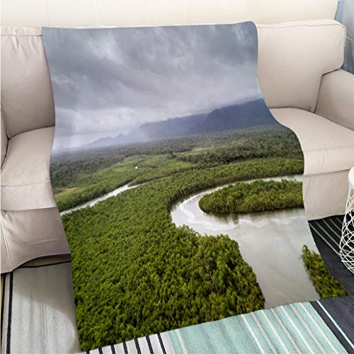 (BEICICI Art Design Photos Cool Quilt MATA Atlantica Atlantic Forest in Brazil Fun Design All-Season Blanket Bed or Couch)