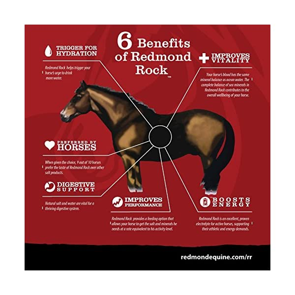 REDMOND - Rock on a Rope Unrefined Salt Rock for Horses 3 to 5 lbs (3 Pack) 6