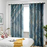 TRTK Grommet Curtains Suitable for Bedroom Kitchen and Living Room Marble,Exquisite Granite Stone Architecture Floor Artistic Nature Faded Rock Picture Pale Blue Grey