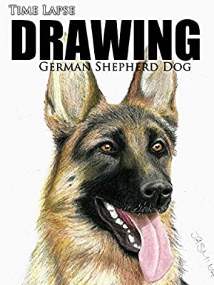 Clip: Time Lapse Drawing: German Shepherd Dog