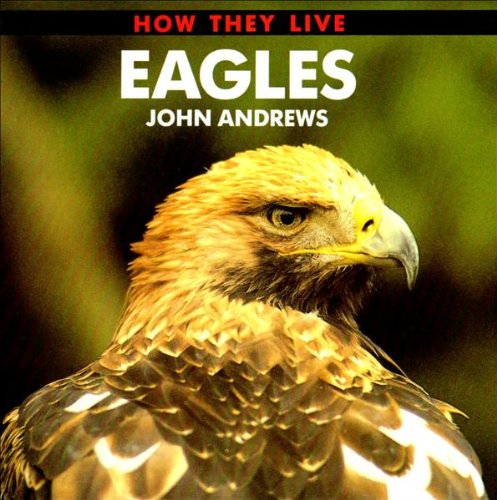 Eagles how they live online download 9hy e book bn77 image 51gq61v9bvlg fandeluxe Choice Image