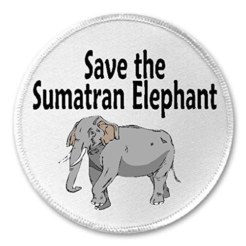Save The Sumatran Elephant - 3