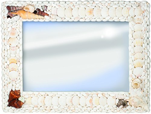 Terragrafics Biscayne Wall Mounted Shell Mirror, 18 by 24-Inch, White/Brown