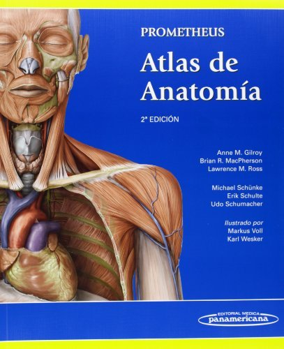 Prometheus atlas de anatomía / Atlas of Anatomy (Spanish Edition)