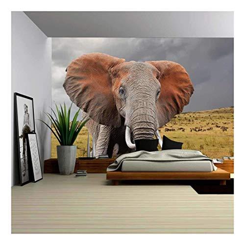 Elephant in National Park of Kenya Africa