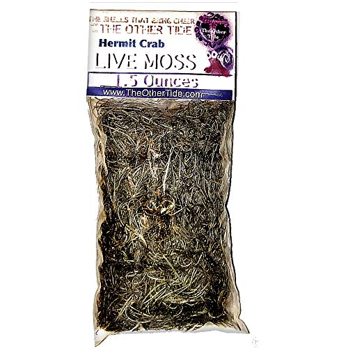 THE OTHER TIDE Hermit Crab Moss - 1.5-Ounce ()