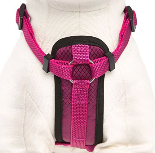 KONG Comfort Padded Chest Plate Dog Harness offered by Barker Brands Inc(Large, Pink).