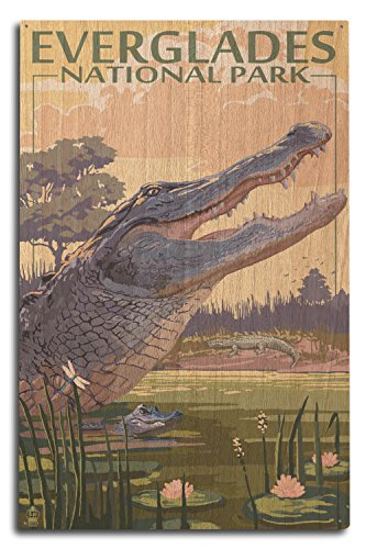 Everglade Alligator (The Everglades National Park, Florida - Alligator Scene (10x15 Wood Wall Sign, Wall Decor Ready to Hang))