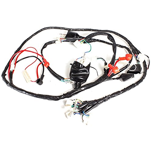 Wiring Loom for FT125T-27 (WRLM117):