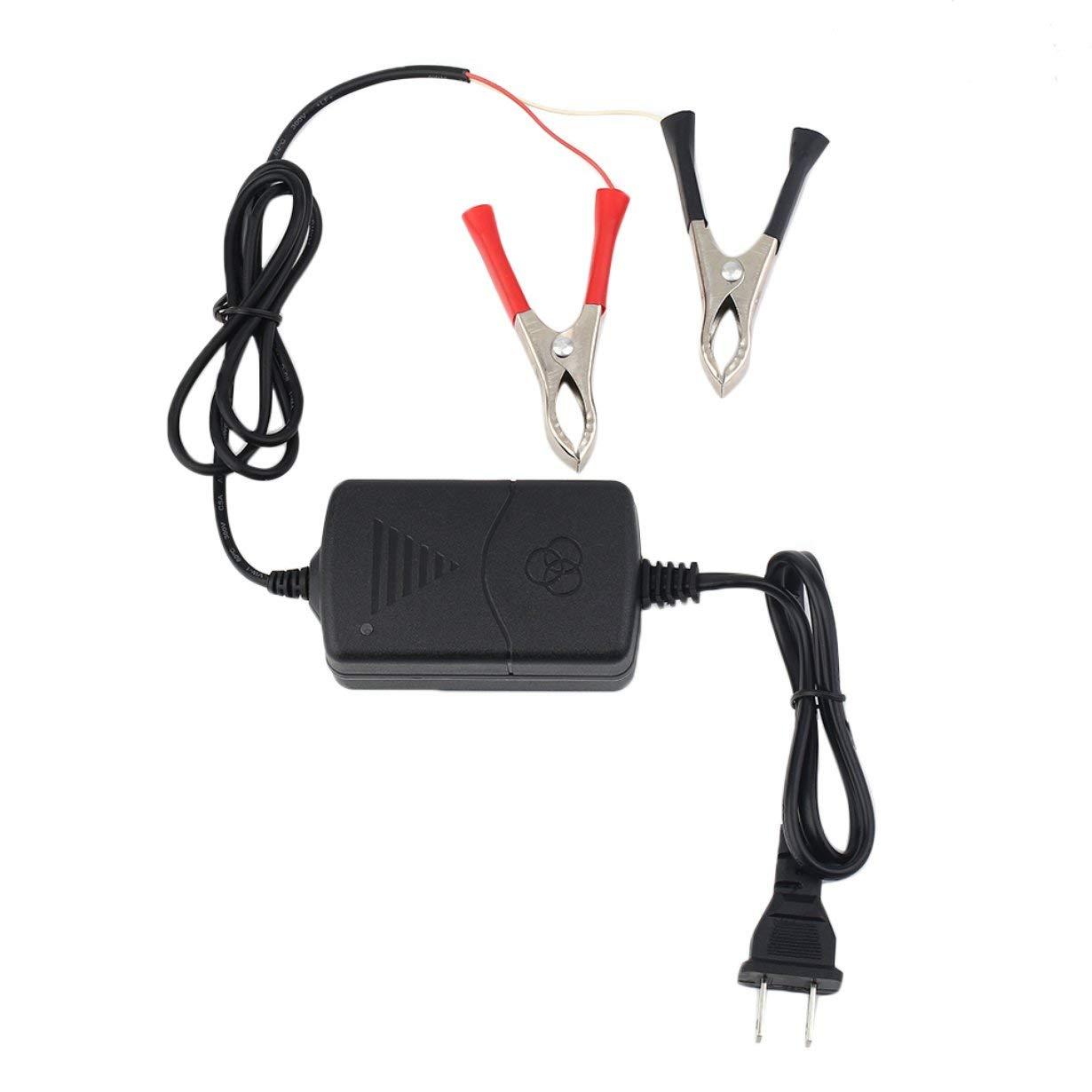 Auto Auto Moto ATV DC 12V / 1A 15W Smart Fast Universal Caricatore di batterie ricaricabili portatile multi-modalità portatile tenera Manutentore UniqueHeart