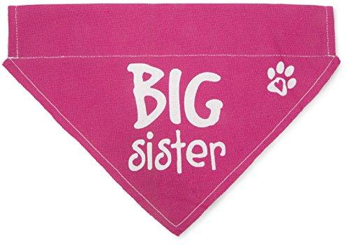 big sister pink paw print